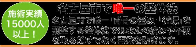 名古屋市で唯一の整体法