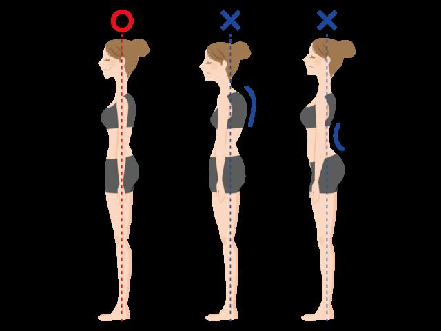 胃下垂の原因となる姿勢
